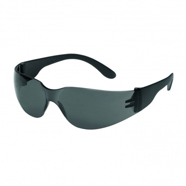 TECTOR Champ grau Schutzbrille nach EN 166